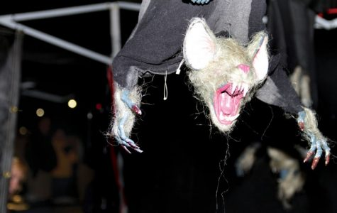 Scary does it: Haunted house a fun romp for all