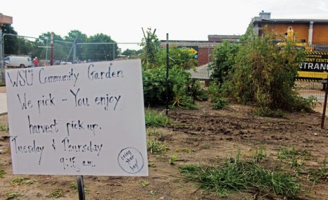 RSC construction puts future of Community Garden at risk