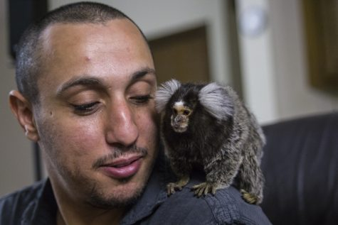 Student greets incoming international students with pet marmoset