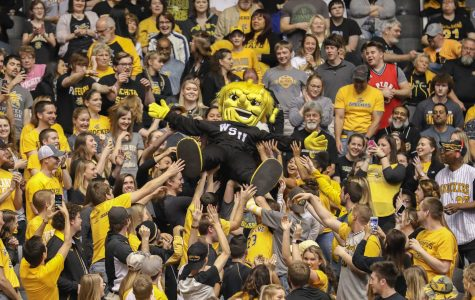 Cohen: Student Section final assessment — not bad, but could be better