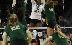 PHOTOS: Shockers win first home AAC match against Bulls