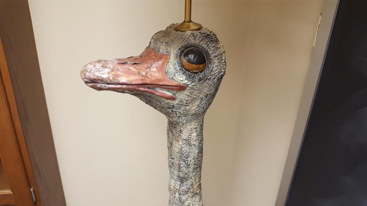 Leroy the Ostrich Lamp poses for a close-up shot of his face. He made sure the photo was taken from his favorite angle.