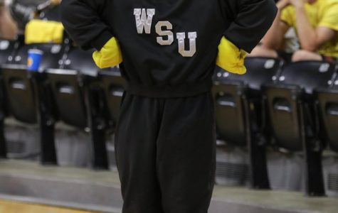 WuShock named top mascot in the NCAA
