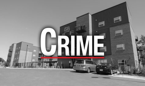 Here are some of May's eye-catching crime log entries