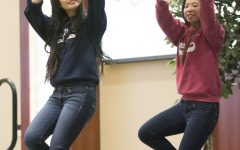 Talent show promotes cultural interests, supports diverse community