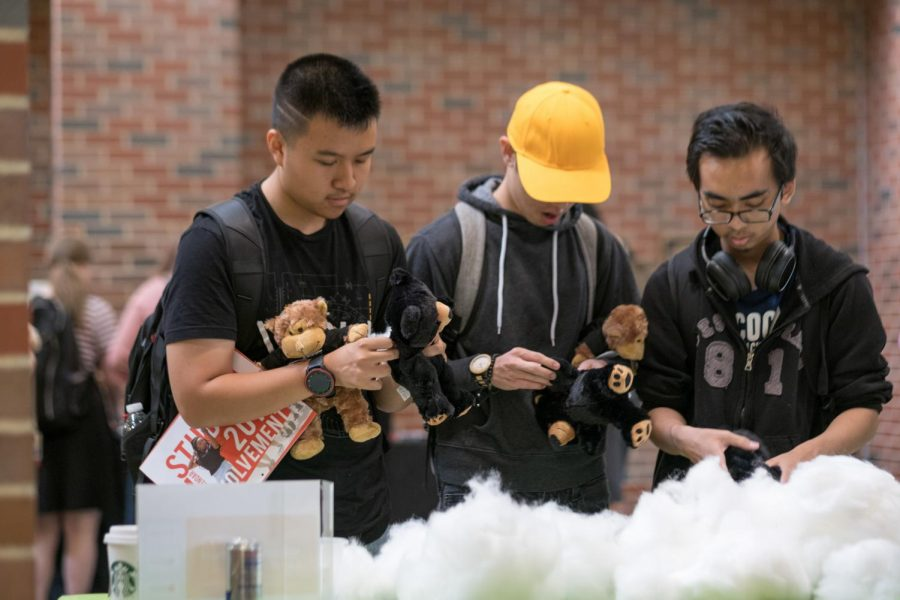 WSU students are enjoying building their Teddy bears with a pile of cotton wool.