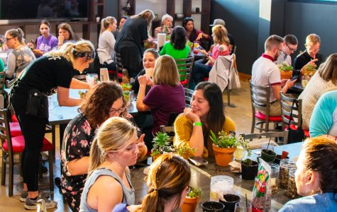 Chicken N Pickle's Succulents and Sangria event is as delectable as it sounds