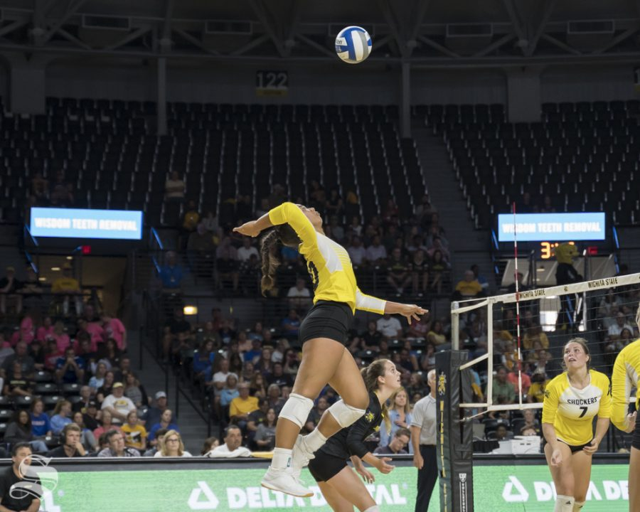 Wichita+State+freshman+Sina+Uluave+goes+up+for+a+kill+during+the+exhibition+game+against+KU+on+August+17+at+Koch+Arena.