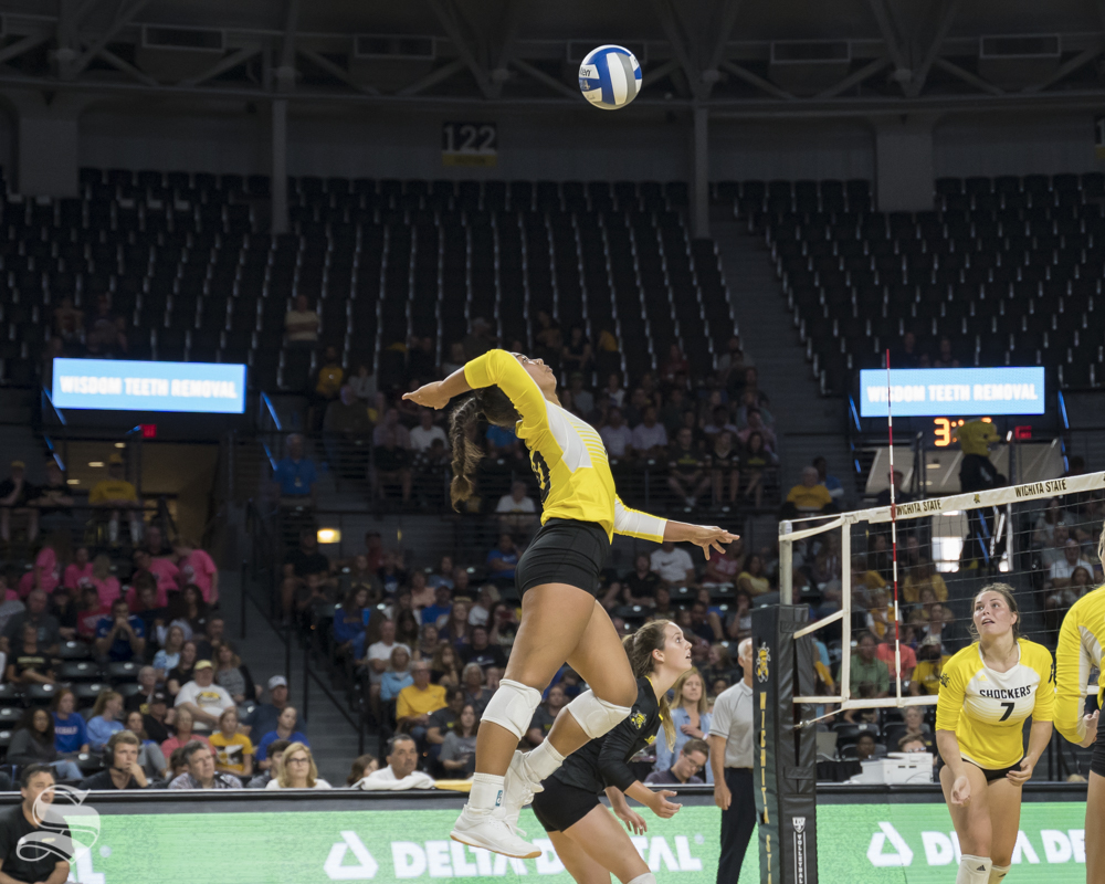 Wichita State freshman Sina Uluave goes up for a kill during the exhibition game against KU on August 17 at Koch Arena.
