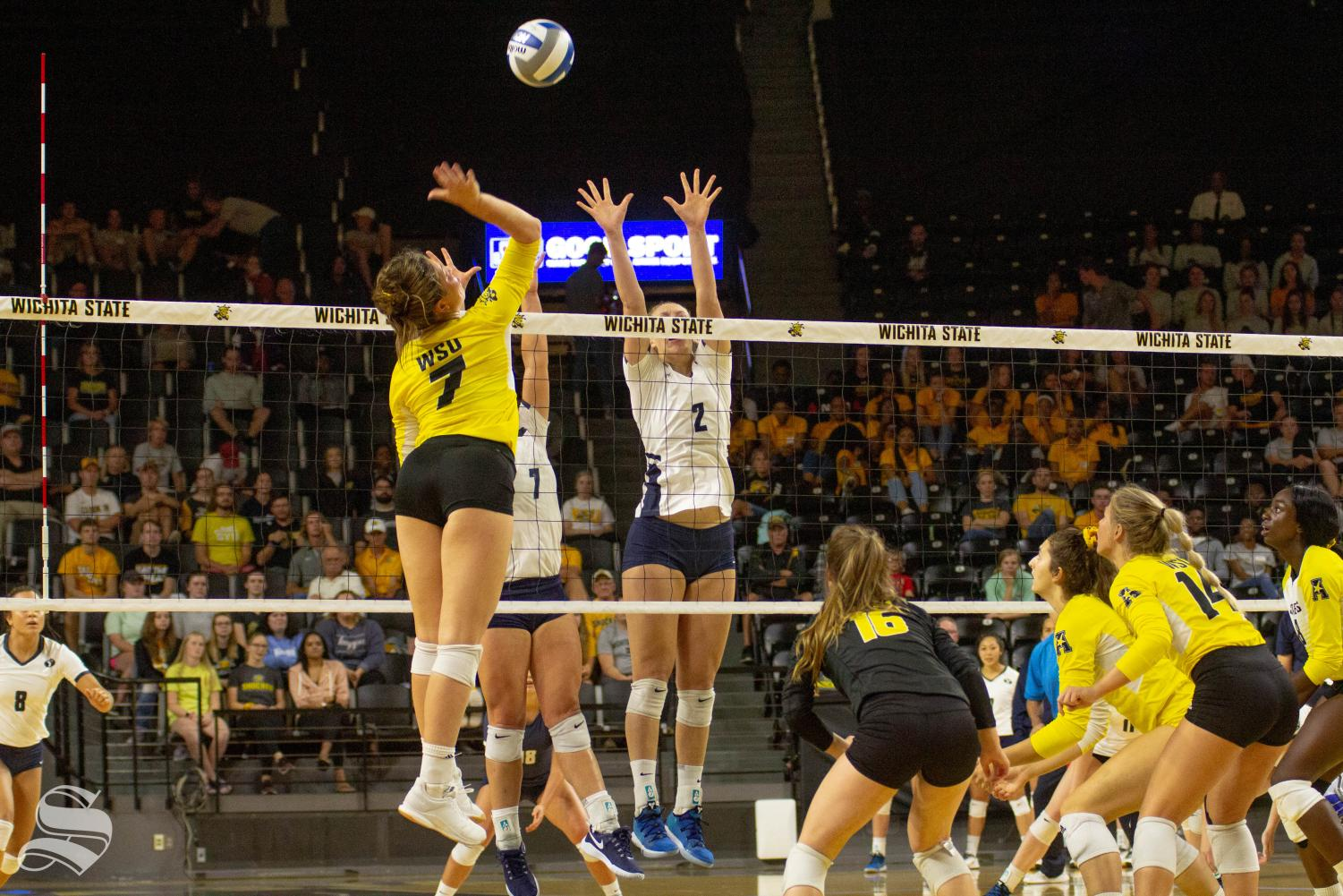 Wichita+State+freshman+Nicole+Anderson+goes+up+for+a+kill+during+WSU%27s+home+opener+against+BYU.