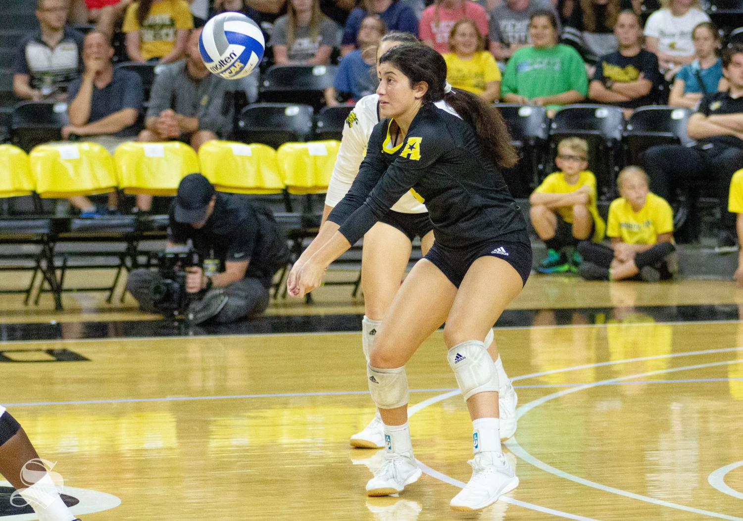 Wichita State freshman Arianna Arjomand hits the ball against Texas on Sept. 14 inside Charles Koch Arena.
