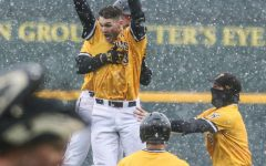 PHOTOS: Shockers secure win with walk-off against Arkansas-Pine Bluff, 2-1