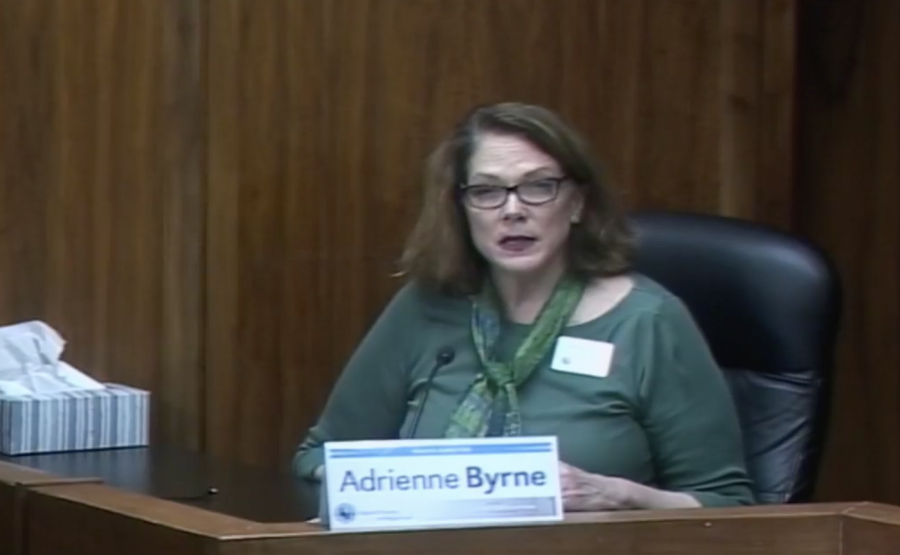 Director of the Sedgwick County Health Department Adrienne Byrne confirms at a March 27 briefing that there is community spread of COVID-19 in the the county.
