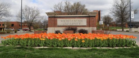 Tulips at the south entrance of Wichita State's main campus.