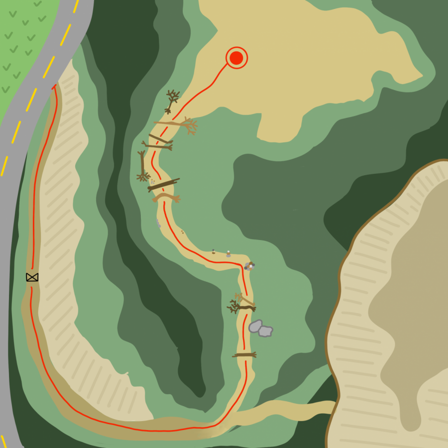 Trail Graphic