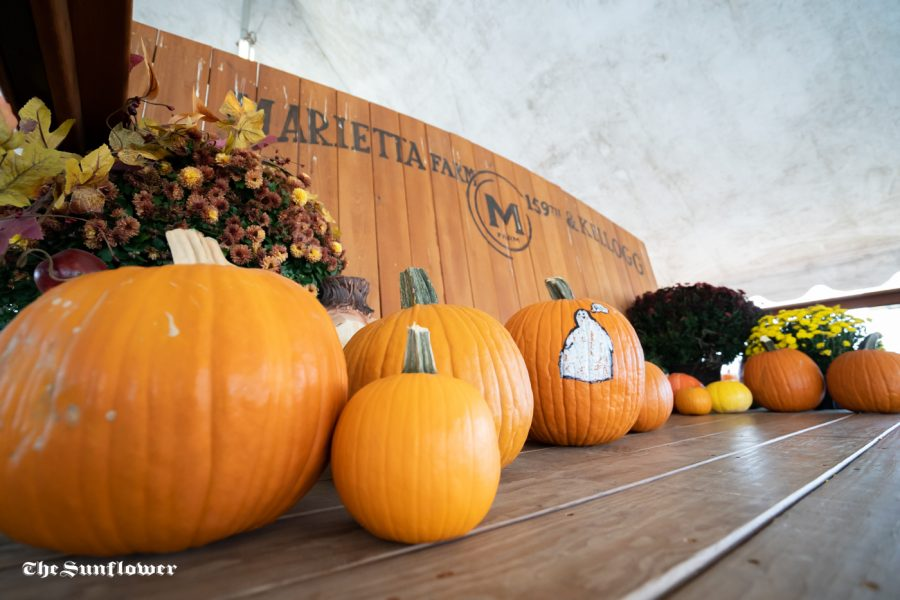 Marietta Farm, located in Andover, has a corn pit, grass maze, inflatable bouncer, live animals, hay bale rides, games, and of course pumpkins for visitors to enjoy.