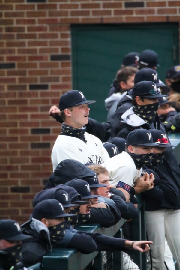 Wichita State baseball players cheer on their fellow teammates during a game against Kansas University at Eck Stadium on March 23.