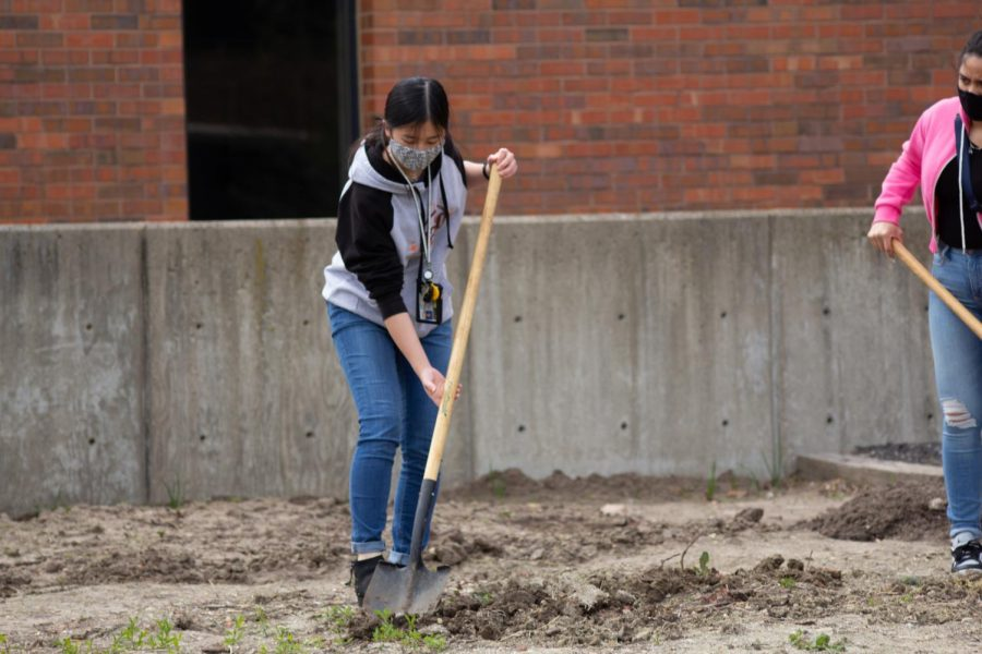 Jaden Wood, a freshman member of the Green Group, plant at the WSU Community Garden on Wednesday during their Earth Day Event.