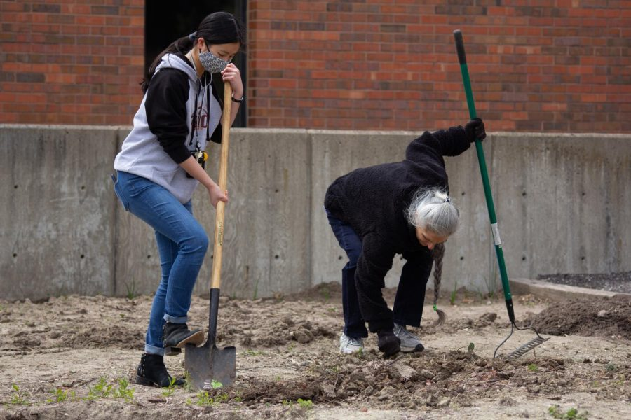 Jaden Wood, a freshman member of the Green Group, and another member plant at the WSU Community Garden on Wednesday during their Earth Day Event.