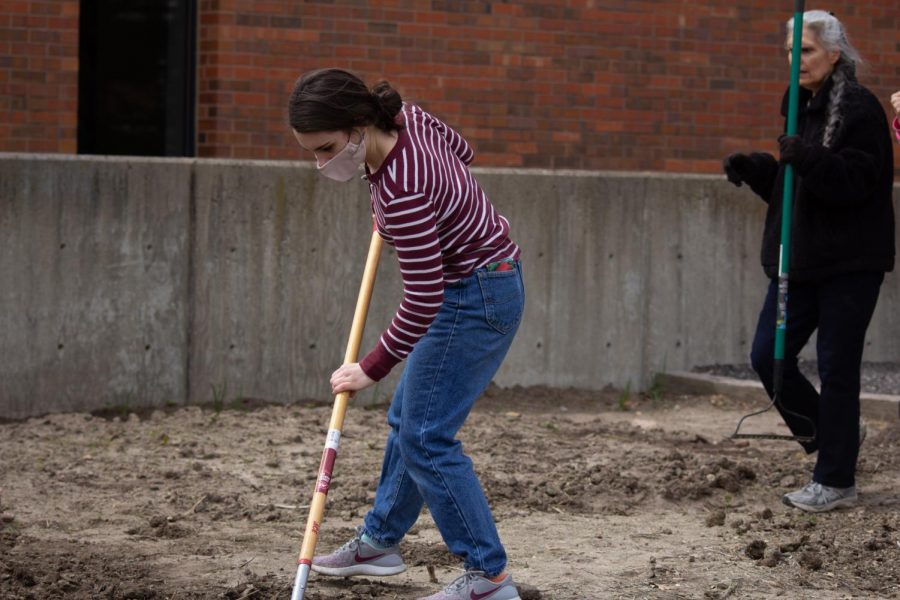 Alice Fitzgerald, president of the Green Group, digs at the WSU Community Garden on Wednesday during their Earth Day Event.