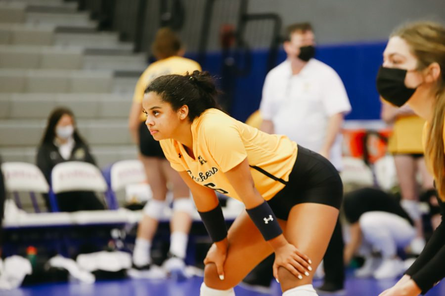 Freshmen Kailin Newsome waits for a serve during the game against Delaware on Sep 11 at Horejsi Family Volleyball Center.